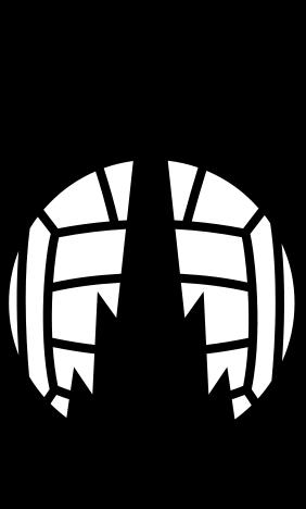 falkirk_fc_logo